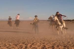 Atacama Horses 2017