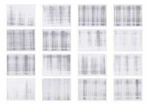 White 2 - 3 paginas (prueba) 2
