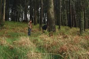 adrien-y-felix-en-el-bosque1